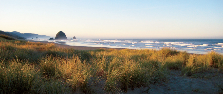 Savor Cannon Beach, Wine and Culinary Festival